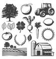 vintage natural elements set vector image