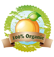An organic label with a ripe orange vector image vector image