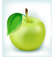 fresh green apple vector image vector image