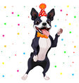 Boston Terrier Party vector image