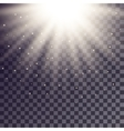 White rays from top with shiny particles vector image