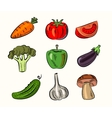 fruit and vegetable vector image vector image