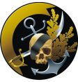 pirate badge vector image vector image