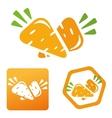 icon vitamins carrots vector image