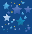 The stars vector image