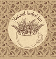 sketch card - craft herbal tea vector image