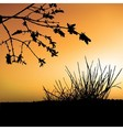 Sunset And Shrub Silhouette vector image vector image