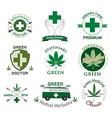 set of cannabis and marijuana vector image