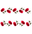 Holiday background with red beautiful roses vector image
