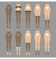 Hosiery elements - tights vector image