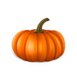 realistic pumpkin icon closeup isolated on white vector image