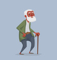 an old african man with a beard and a cane vector image