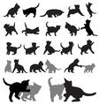 Kitten silhouettes vector image