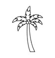 beach palm tree coconut tropical vacation concept vector image