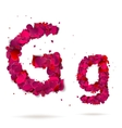 Letter g made from hearts Love alphabet vector image