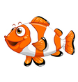 A nemo fish vector image