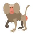 Baboon icon cartoon style vector image