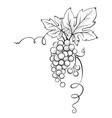 Floral decoration - corner vector image vector image