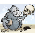 Monkey and Skull vector image