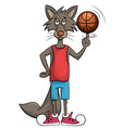 sweet wolf plays in a basket vector image