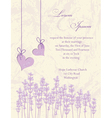 Wedding invitation card Lavender background vector image