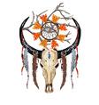 Bull Skull Feathers Tree branch vector image