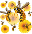 Wasps flying around yellow flowers vector image