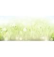 Green spring grass sky bokeh background vector image vector image