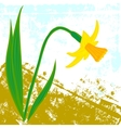 card with one daffodil vector image