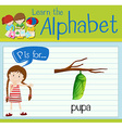 Flashcard letter P is for pupa vector image