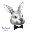 portrait of a rabbit vector image