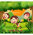 Three monkeys dancing in the forest vector image