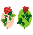 couple of rose vector image