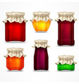 set of jars with jam and retro vector image
