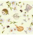 Chamomile tea seamless pattern vector image