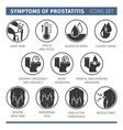 Symptoms of prostatitis infographic vector image
