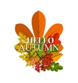 Autumn foliage banner Autumn typographical vector image
