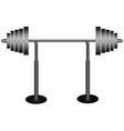 barbell vector image vector image