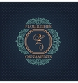 Vintage Decorative Elements Flourishes vector image vector image