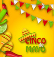 holiday celebration banner for cinco de mayo with vector image
