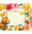 Vintage citrus frame vector image