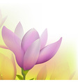 Abstract Magnolia vector image