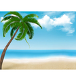 Palm tree holiday background vector image vector image