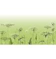 Herbal seamless border vector image