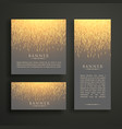 Luxury light sparkle banner card design in vector image