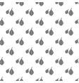 trachyspermum ammi pattern vector image