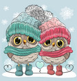 cute owls boy and girl vector image