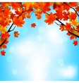 Red and yellow leaves against bright sky EPS 8 vector image