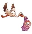 stork and neewborn baby vector image