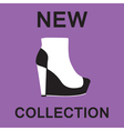 ankle boots vector image